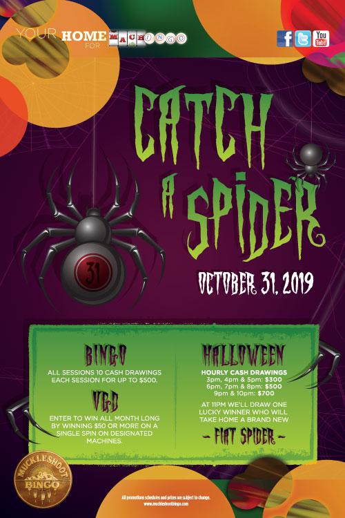 Catch A Spider
